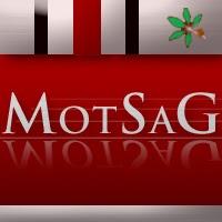 Motsagprofile1